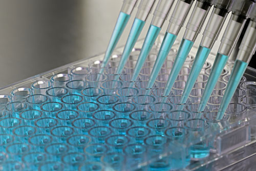 What is Molecular Lab Testing & Software